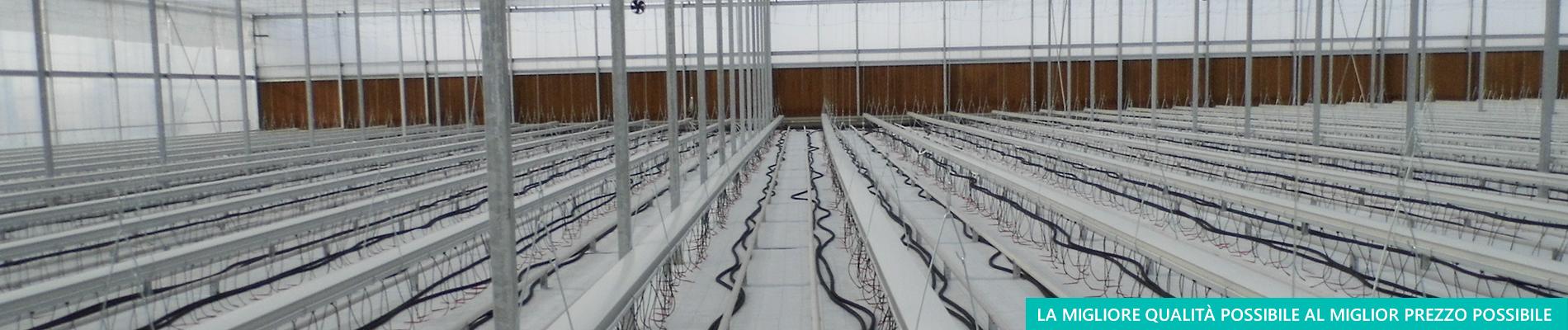 Vendita di tessuti tecnici per colture protette - Aduno srl